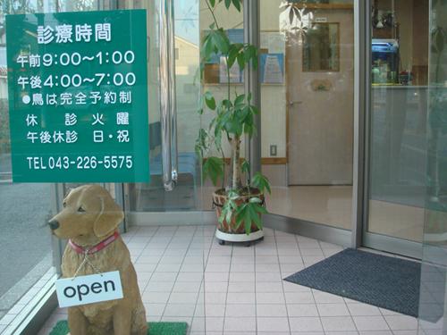 グリーン動物病院 外観